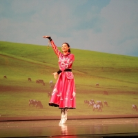 Chinese Cultural Experience Gala: North & South of China